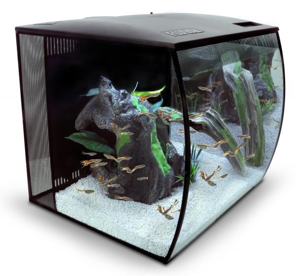 Fluval Flex 57 Liter schwarz Nano Aquarienset