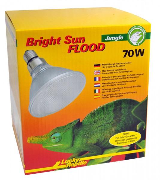 Lucky Reptile Bright Sun FLOOD UV Jungle