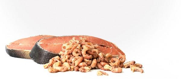 Tackenberg Menü vom Lachs mit Krabben & Reis 500 g !KEIN VERSAND MÖGLICH!
